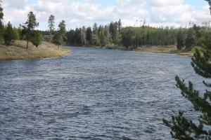 Yellowstone 2014 005