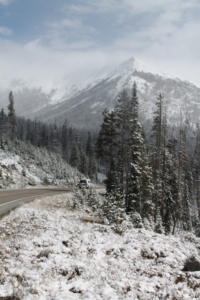 Yellowstone 2014 087