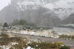 Yellowstone 2014 114